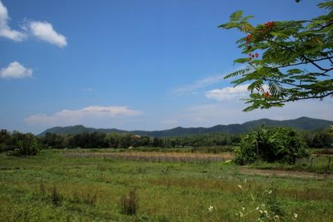 Farmland outside of Chiang Mai, Thailand.